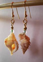 Shell Earrings by mayan-art