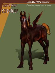 Ginku by serranef