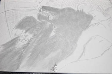 'Dead' Dog by Ravz689