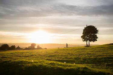 Sunset Dog Walker by mrk
