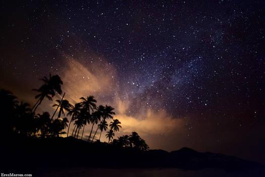 Palms of the Milky Way by erezmarom