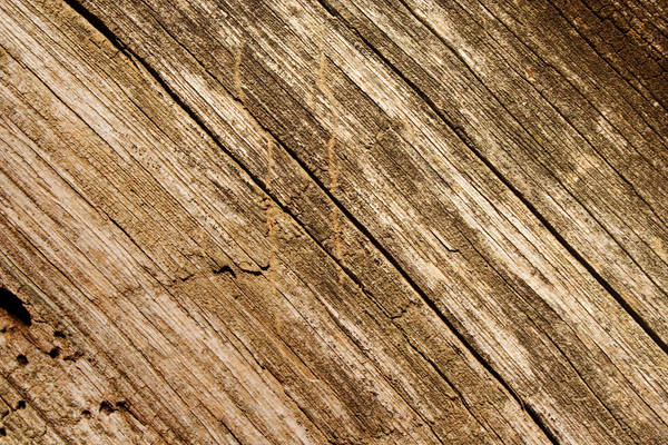 Wood Texture 3 by violety