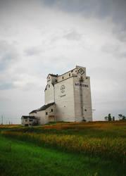 Grain Elevator by Joe-Lynn-Design
