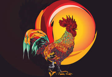 Year of the Rooster by huMAC