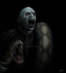 Lord Voldemort by SessaV