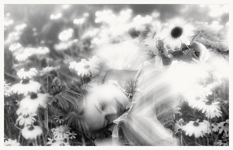 The Garden Of Secrets by palirox