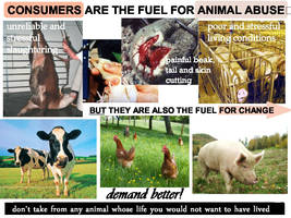 Consumers Fuel Animal Abuse by BababoCopyrights