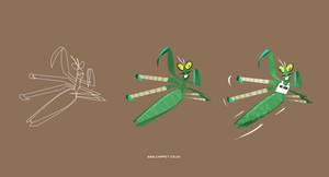 Master Mantis by Chapet