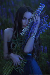 night of lupines 2 by aKami777
