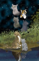 Medicine Cats of Thunderclan by ArcticRaccoon