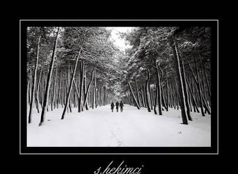 winter... by blackisbasic