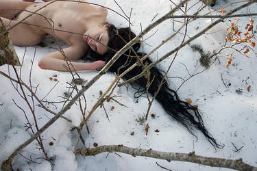 Winter Farewell II by frysoler