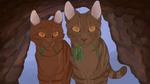 Medicine cat den by alvringer