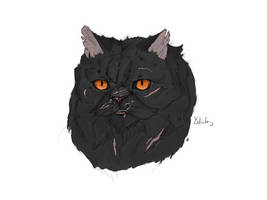 Yellowfang coloured by alvringer