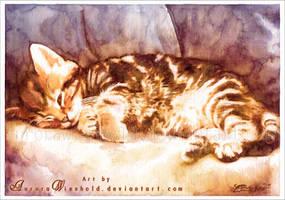Cat nap by RoryonaRainbow