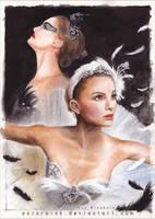 Black Swan by RoryonaRainbow