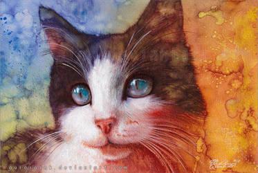Crystal eyes by RoryonaRainbow