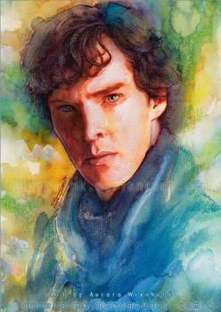 Sherlock by RoryonaRainbow