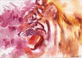 Tiger roar by RoryonaRainbow