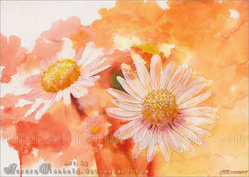 Enjoy the summertime by RoryonaRainbow