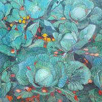 Cabbage by AlexeyRudikov