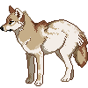 'yote by CoyoteSoot