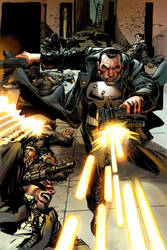 Punisher Alternate Cover by NealAdams