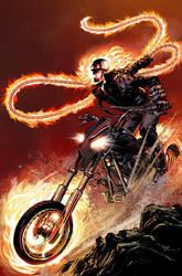 Ghost Rider Alternate Cover by NealAdams