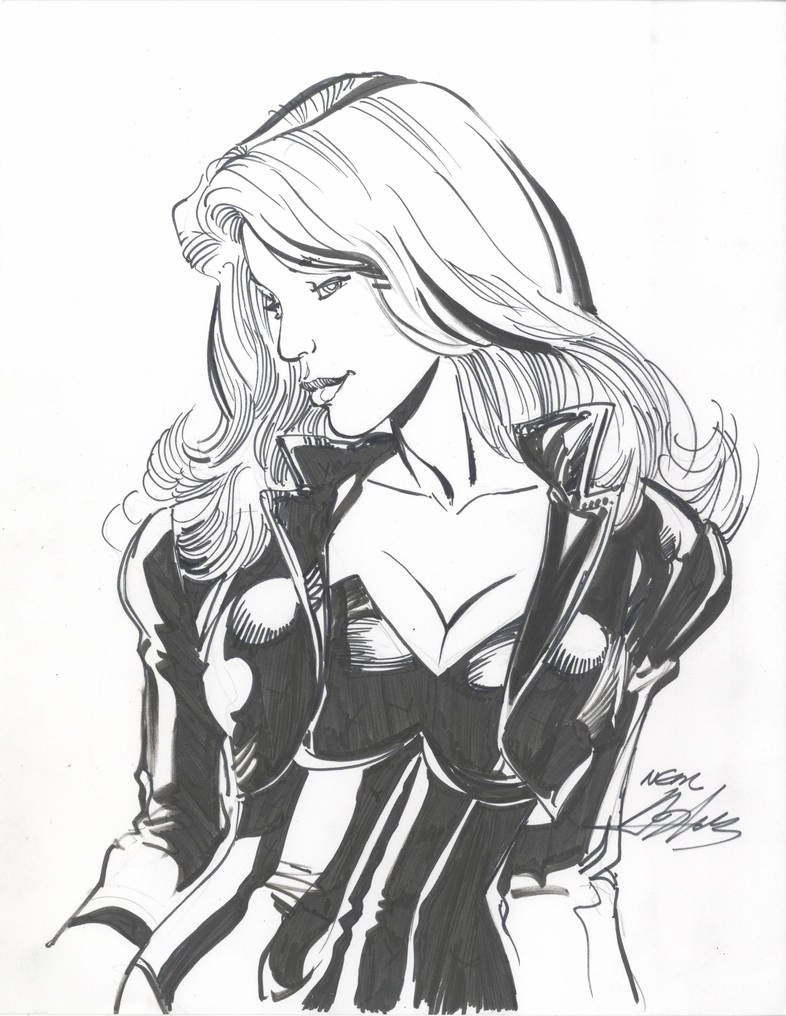 Black Canary Commission by NealAdams