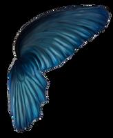 Wingsblue by DeniseWorisch