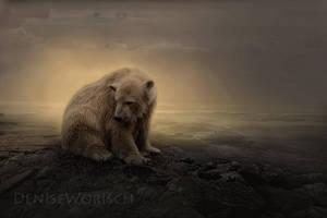 Bear by DeniseWorisch