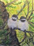 Chickadee Lovebirds by PEISeaChange