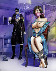 Silk and her Ladyship by mileshendon