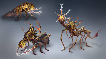 Thunder Bug Life Cycle by OrmIrian