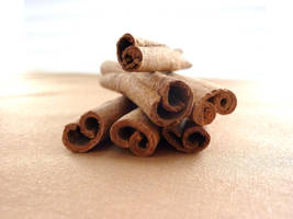 Cinnamon Sticks by LoveandConfections