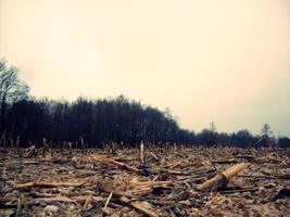 Sad Nature. by Pillowbox