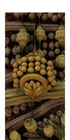 Seed Pods by TomWilcox