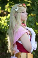 Princess Zelda by Petjan