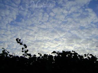 Fabulous sky-line- by Marliinda