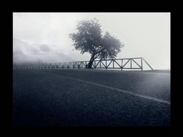 suicide by ziyakasapoglu