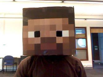 Minecraft head by TaroNuke