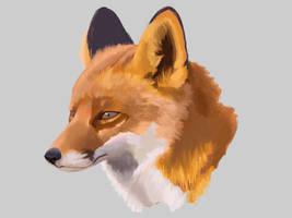 Fox by YanisaXlll