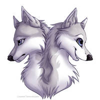 Akila - Commission - by Lisannexx