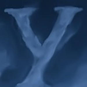 yoctox's Profile Picture