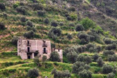 La casa e gli ulivi - hdr by yoctox