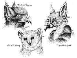 Three typical gryphons by Lizkay