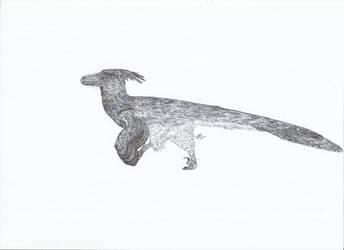 luanchuanraptor by PhanerozoicWild