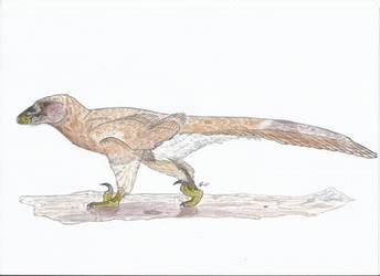 Deinonychus -Indeterminate- (MussentuchitMember) by PhanerozoicWild