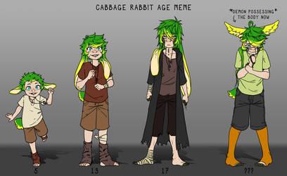 TTH :: Cabbage Rabbit age meme by PiruuMi