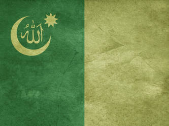 Flag of the United Islamic Caliphate by Lordnarunh